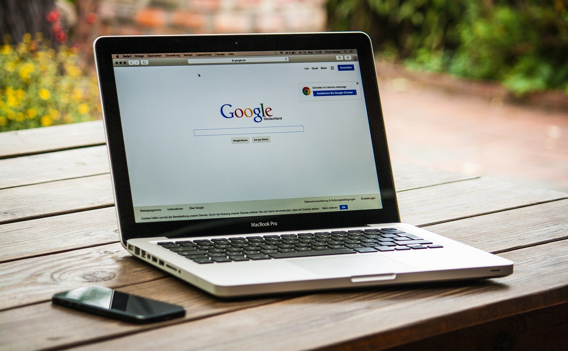 Penguin, Panda e Hummingbird: gli algoritmi SEO di Google